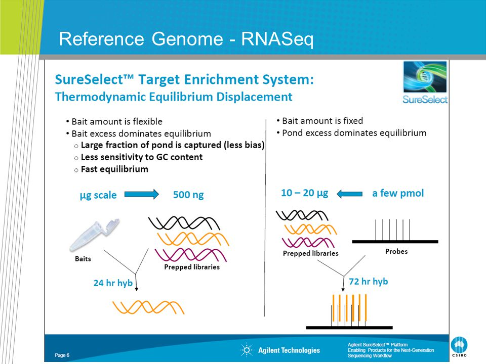 CSIRO. INI Meeting July 2010 - Tutorial - Applications Reference Genome - RNASeq