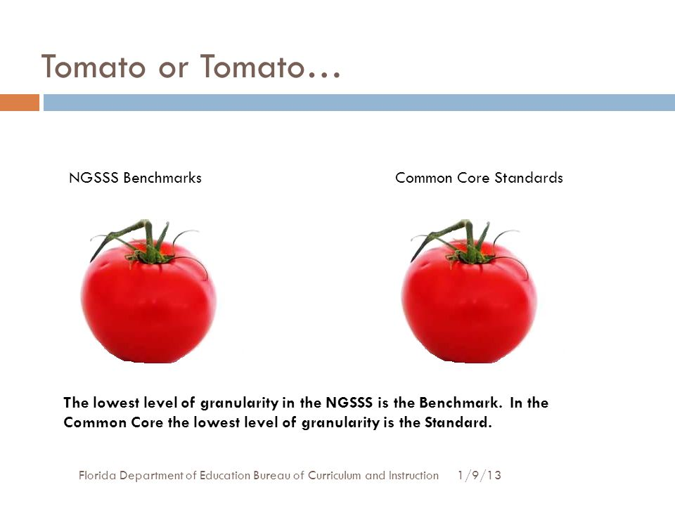 Tomato or Tomato… 1/9/13Florida Department of Education Bureau of Curriculum and Instruction NGSSS BenchmarksCommon Core Standards The lowest level of