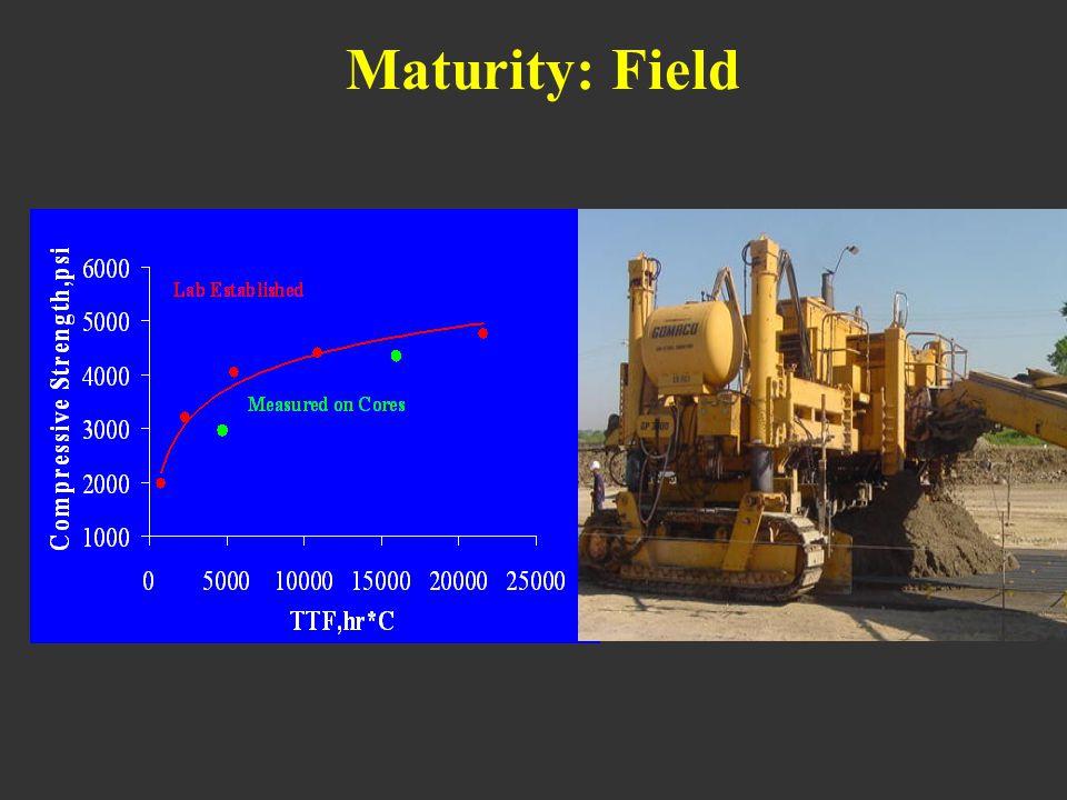 Maturity: Field
