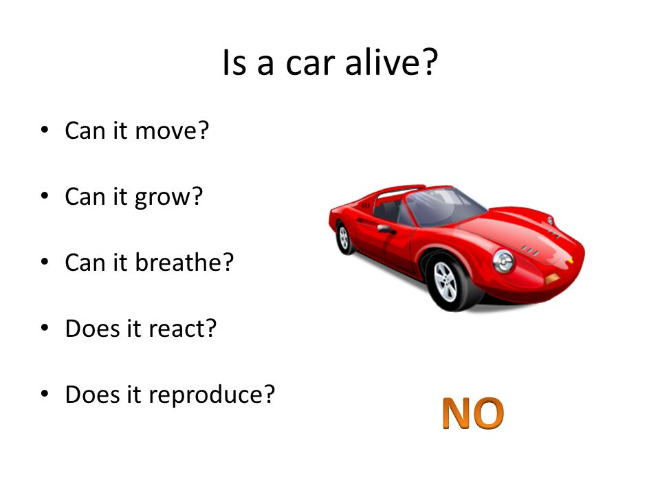 Is a car alive Can it move Can it grow Can it breathe Does it react Does it reproduce