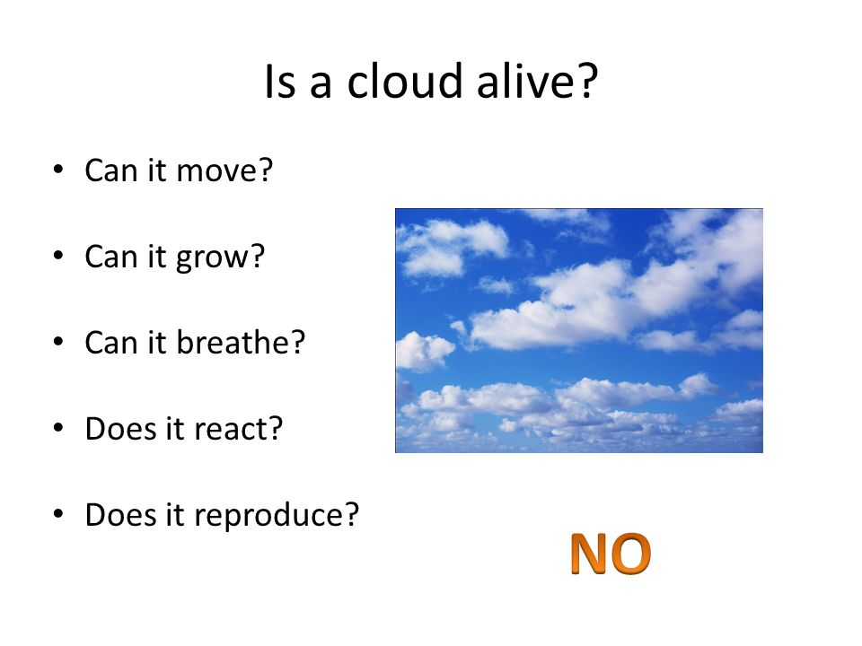 Is a cloud alive Can it move Can it grow Can it breathe Does it react Does it reproduce