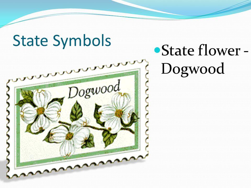 State Symbols State flower - Dogwood