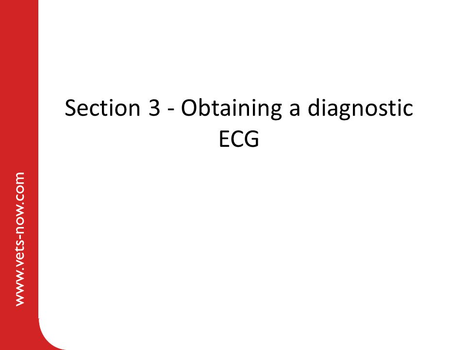 www.vets-now.com Section 3 - Obtaining a diagnostic ECG