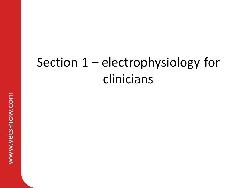 www.vets-now.com Section 1 – electrophysiology for clinicians