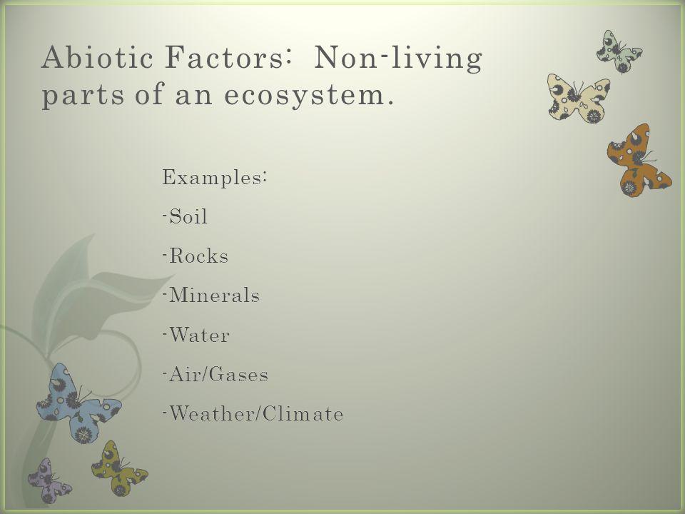 Abiotic Factors: Non-living parts of an ecosystem.
