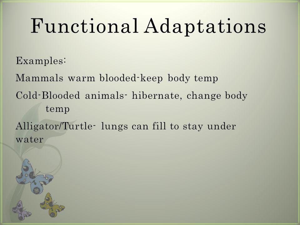 Functional Adaptations