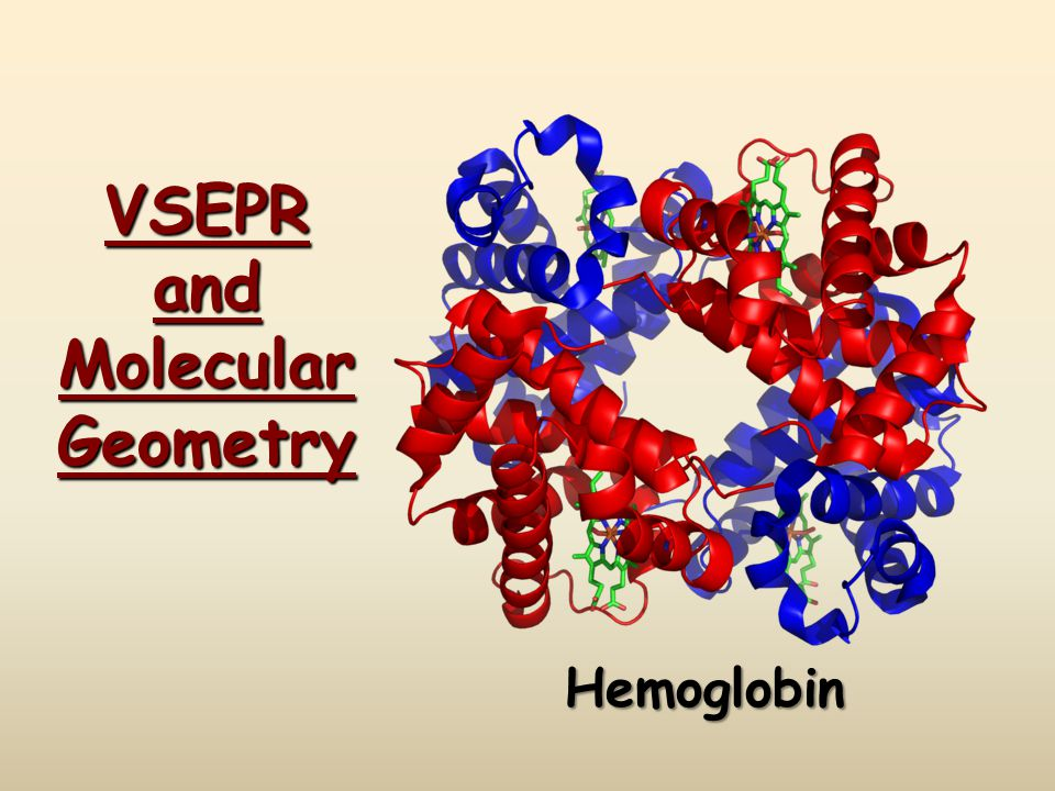 VSEPR and Molecular Geometry Hemoglobin