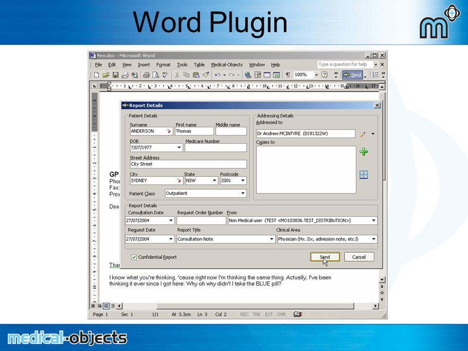 Word Plugin