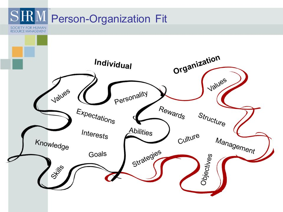 Person-Organization Fit Individual Organization Personality Values Expectations Knowledge Skills Interests Strategies Objectives Values Culture Rewards Management Structure Abilities Goals