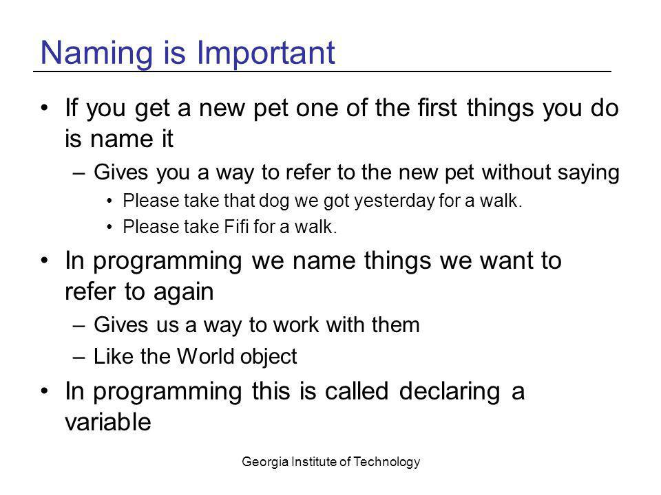 Georgia Institute of Technology Naming is Important If you get a new pet one of the first things you do is name it –Gives you a way to refer to the ne