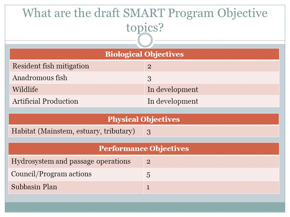 What are the draft SMART Program Objective topics.