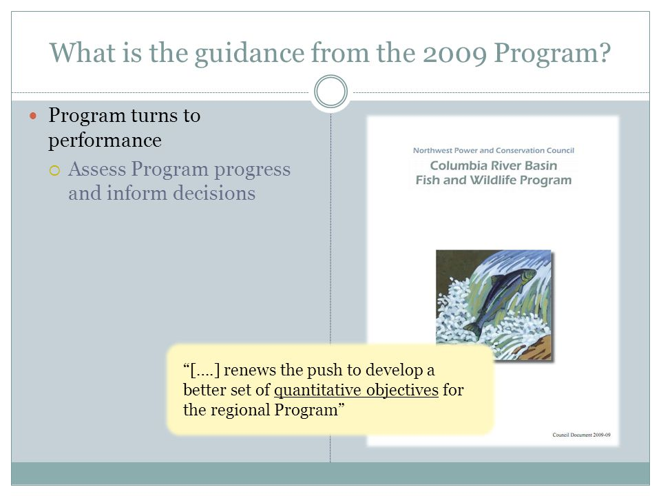 What is the guidance from the 2009 Program.