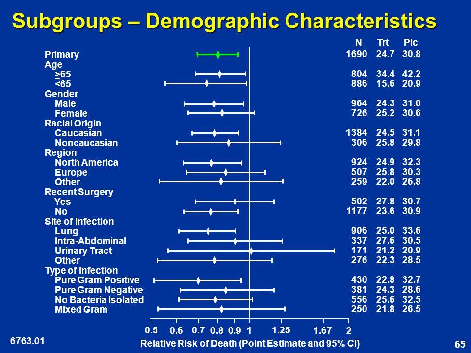 65 Subgroups – Demographic Characteristics 6763.01