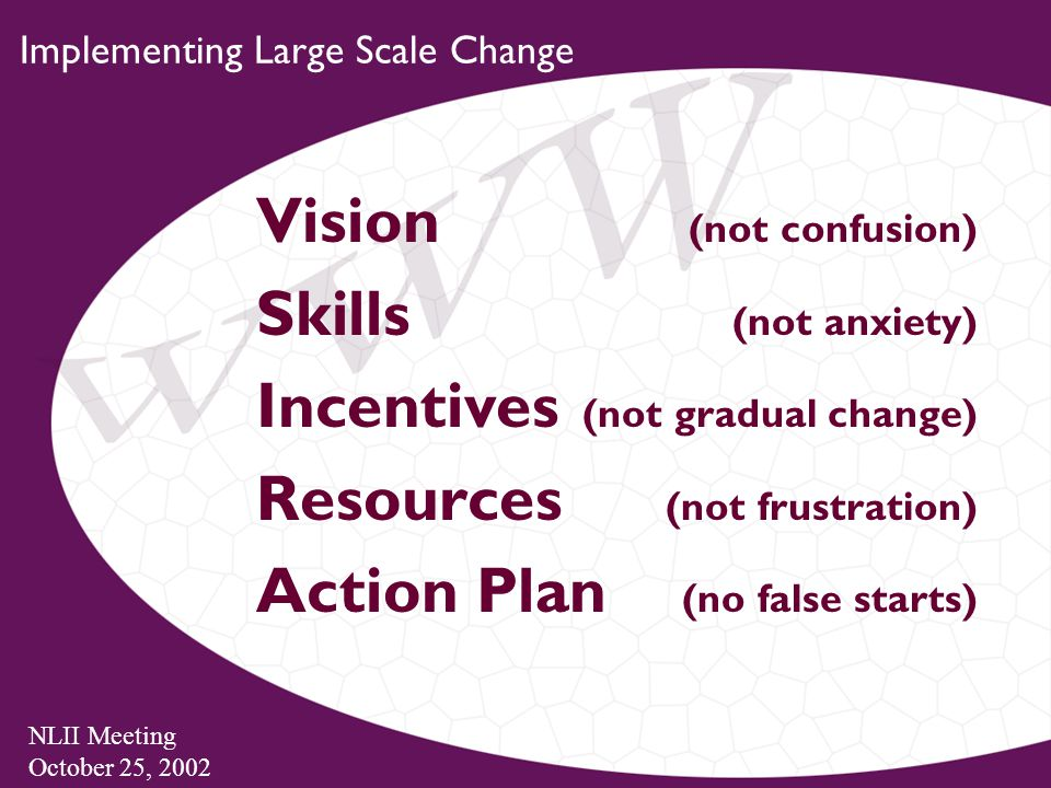 NLII Meeting October 25, 2002 Implementing Large Scale Change Vision (not confusion) Skills (not anxiety) Incentives (not gradual change) Resources (not frustration) Action Plan (no false starts)