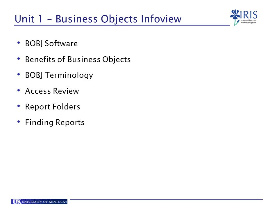 Titles and Headings In BOBJ, The title of the report and column headings consist of a formula.
