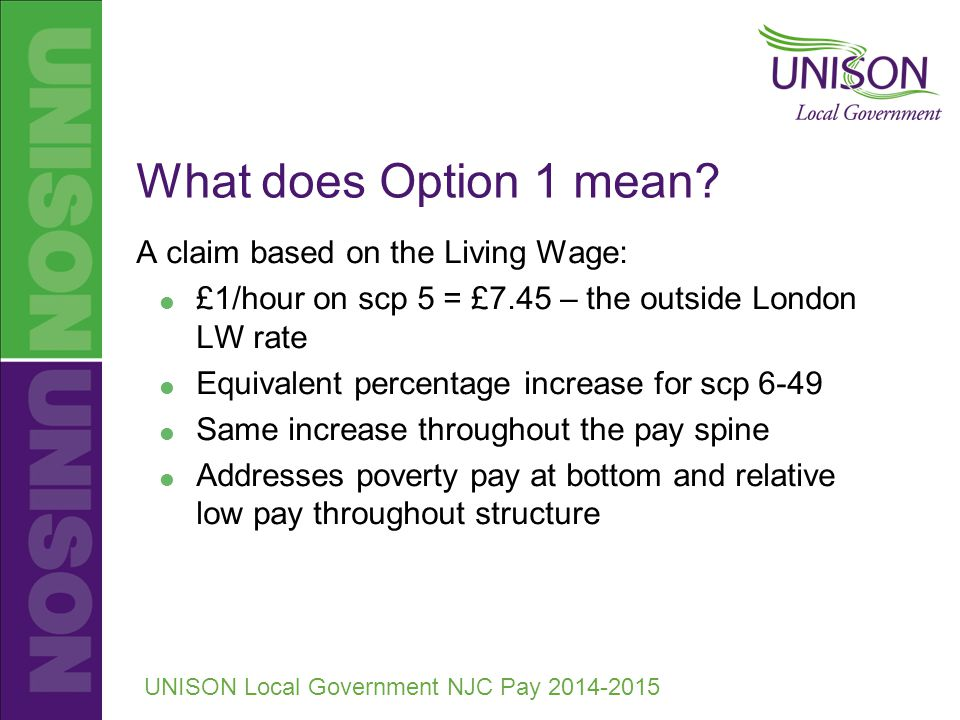 UNISON Local Government NJC Pay 2014-2015 What does Option 1 mean.