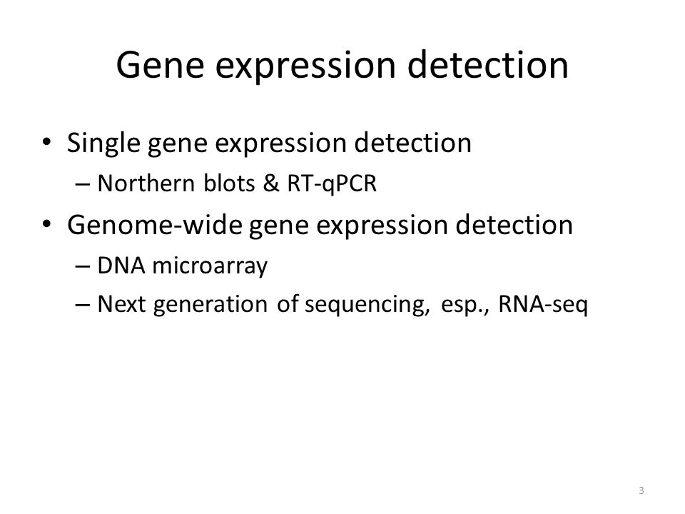 DNA microarray Microarray consists of an arrayed series of thousands of probes Probe-target hybridization is usually detected and quantified to determine relative abundance of nucleic acid sequences in the target Valerie Reinke, WormBook.