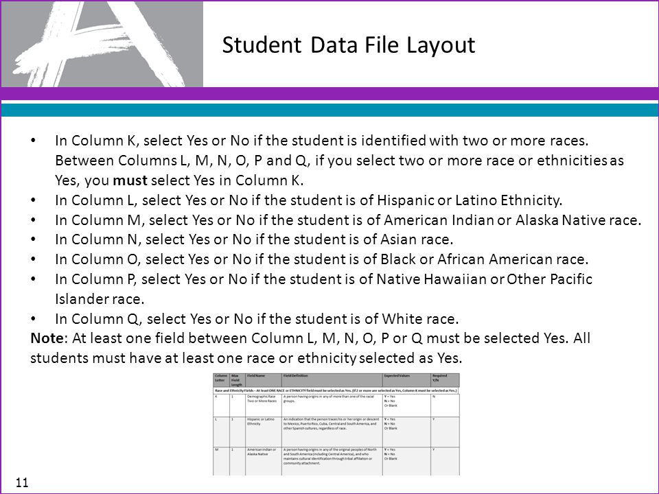 Student Data File Layout 11 In Column K, select Yes or No if the student is identified with two or more races.