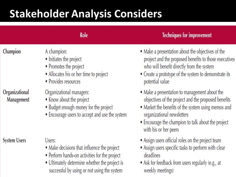 Stakeholder Analysis Considers