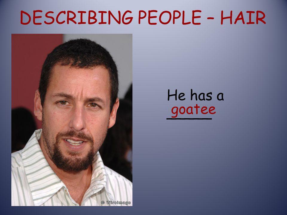 DESCRIBING PEOPLE – HAIR goatee He has a _____