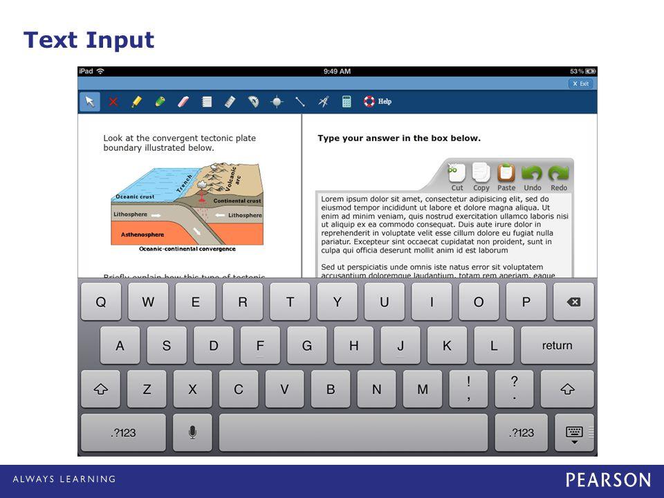 Text Input