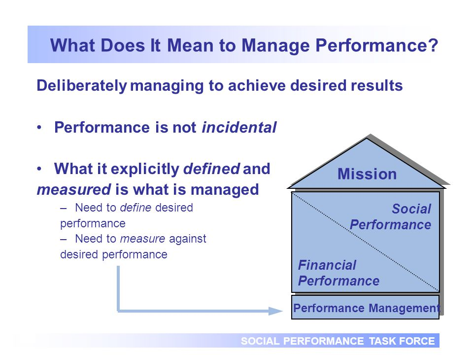 SOCIAL PERFORMANCE TASK FORCE 10 What Does It Mean to Manage Performance.