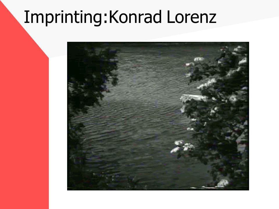 Imprinting:Konrad Lorenz