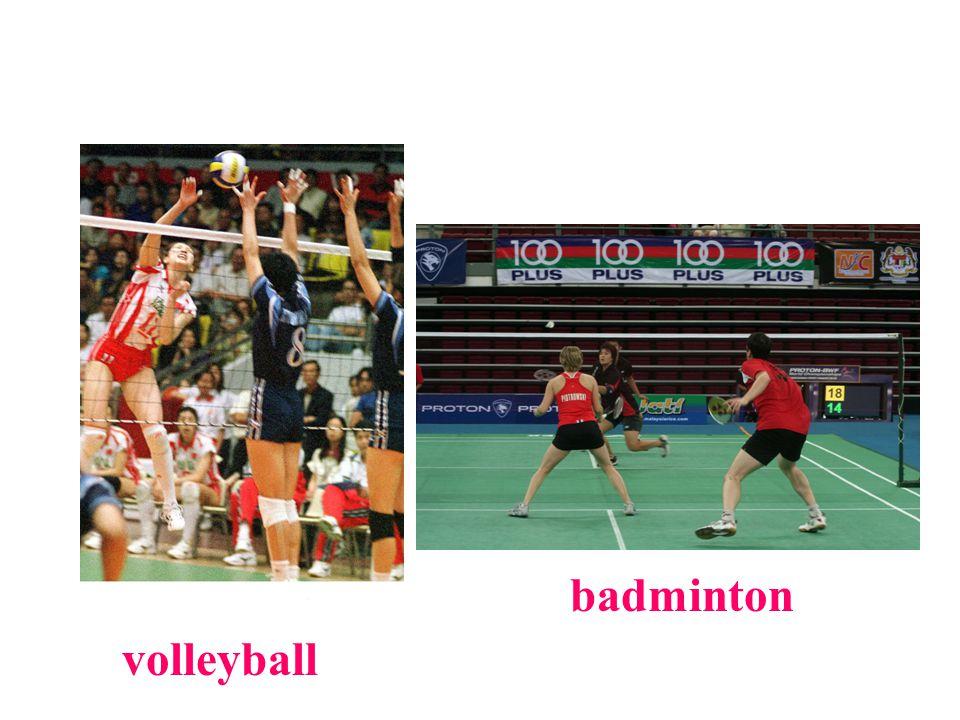 volleyball badminton