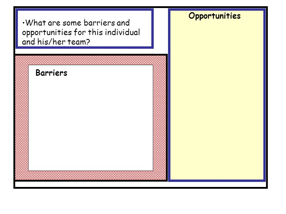 What are some barriers and opportunities for this individual and his/her team? Opportunities Barriers