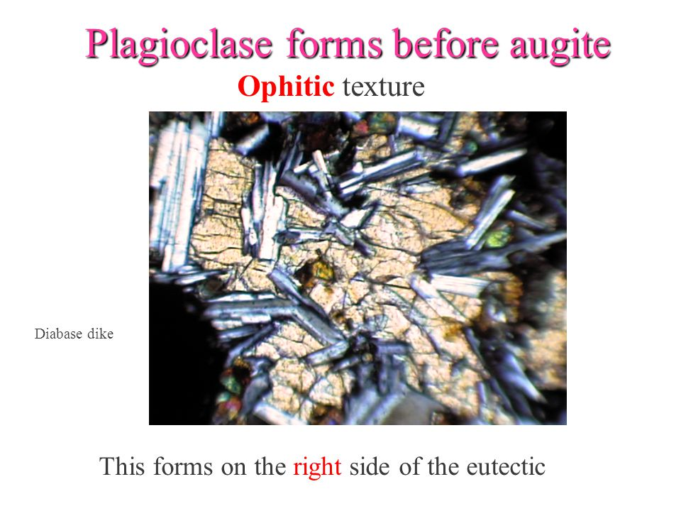 Plagioclase forms before augite This forms on the right side of the eutectic Ophitic texture Diabase dike