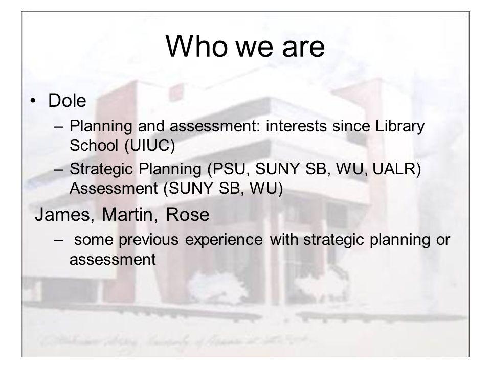 Literature Strategic Planning: vast Assessment: vast Integrated approach: little