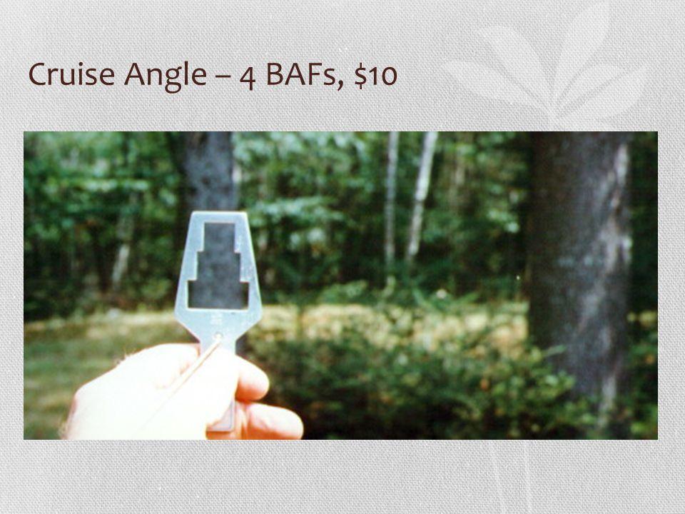 Cruise Angle – 4 BAFs, $10