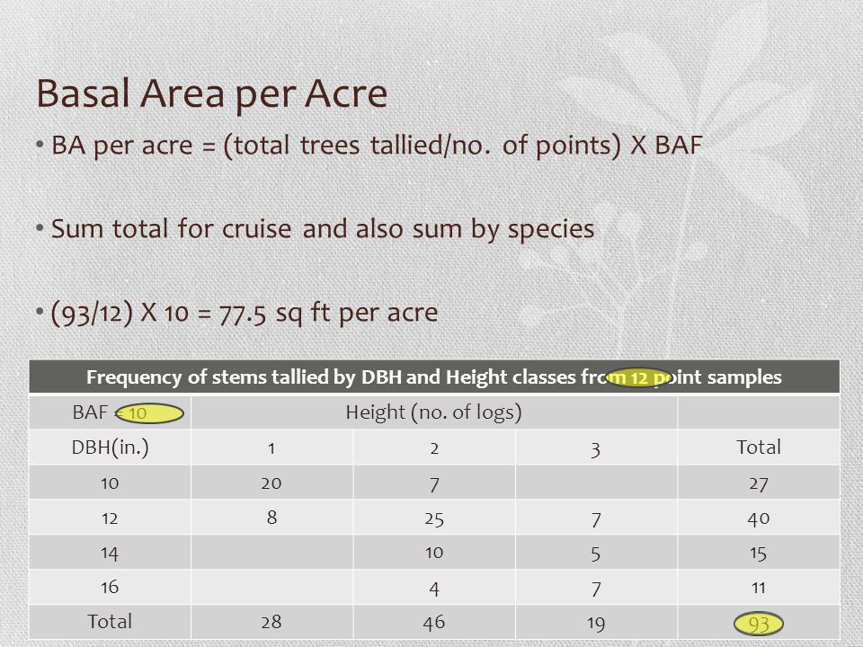 Basal Area per Acre BA per acre = (total trees tallied/no. of points) X BAF Sum total for cruise and also sum by species (93/12) X 10 = 77.5 sq ft per