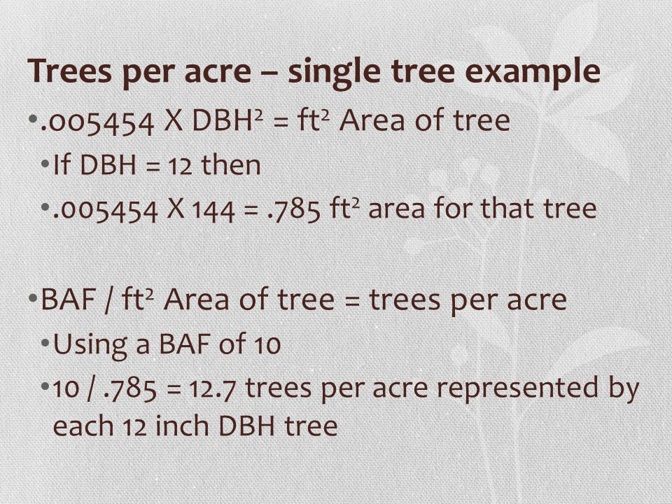 Trees per acre – single tree example.oo5454 X DBH 2 = ft 2 Area of tree If DBH = 12 then.005454 X 144 =.785 ft 2 area for that tree BAF / ft 2 Area of