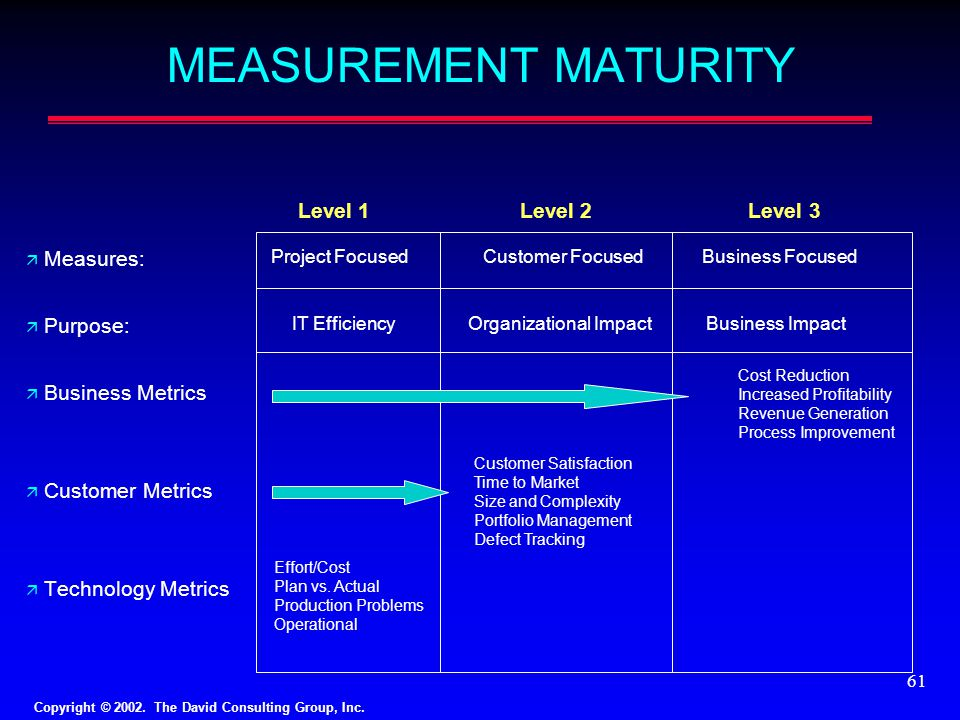 Copyright © 2002. The David Consulting Group, Inc. 61 MEASUREMENT MATURITY ä Measures: ä Purpose: ä Business Metrics ä Customer Metrics ä Technology M