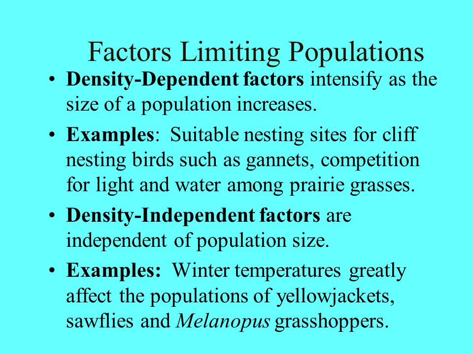 Factors Limiting Populations Density-Dependent factors intensify as the size of a population increases. Examples: Suitable nesting sites for cliff nes