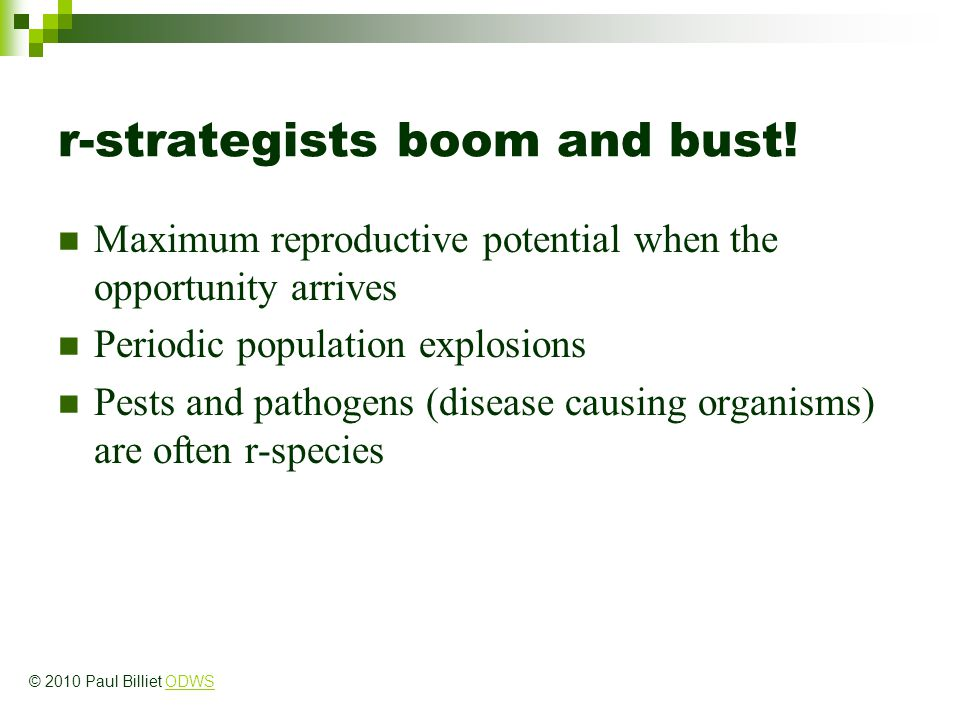 r-strategists boom and bust! Maximum reproductive potential when the opportunity arrives Periodic population explosions Pests and pathogens (disease c