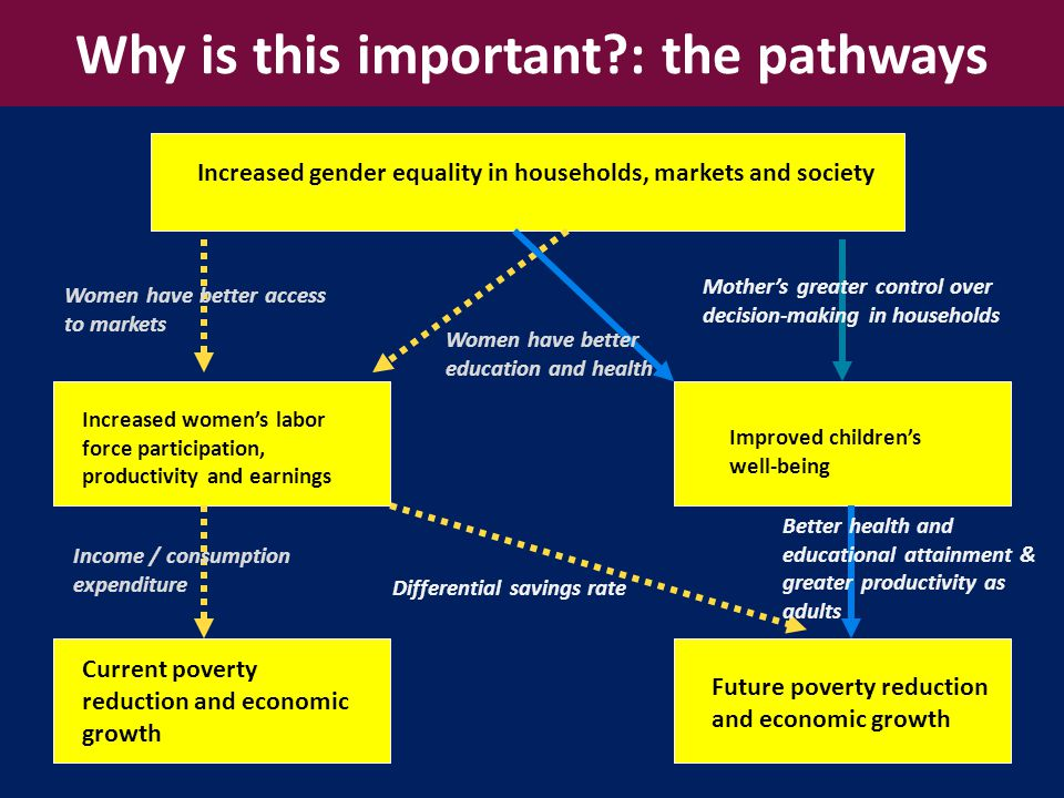 4 Gender equality is smart economics Increased gender equality in households, markets and society Increased women's labor force participation, productivity and earnings Improved children's well-being Future poverty reduction and economic growth Current poverty reduction and economic growth Differential savings rate Women have better education and health Mother's greater control over decision-making in households Better health and educational attainment & greater productivity as adults Income / consumption expenditure Women have better access to markets Why is this important : the pathways