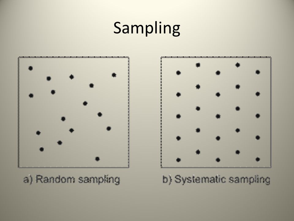 1.Determine the sampling error for the sale as a whole.