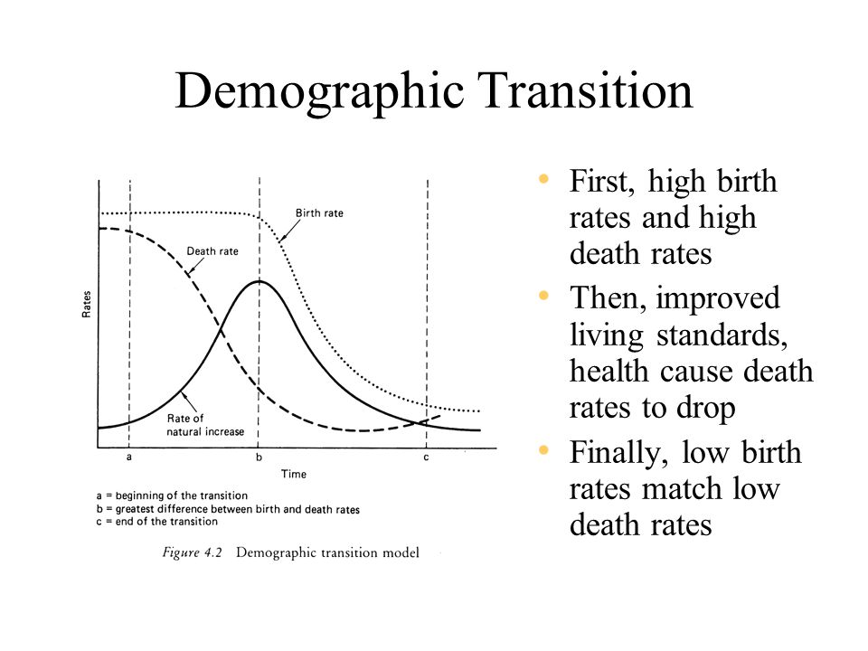 Demographic Transition First, high birth rates and high death rates Then, improved living standards, health cause death rates to drop Finally, low birth rates match low death rates
