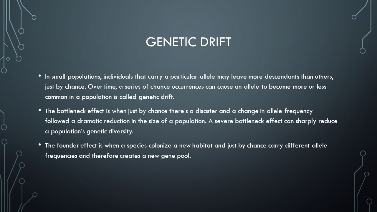 GENETIC DRIFT In small populations, individuals that carry a particular allele may leave more descendants than others, just by chance.