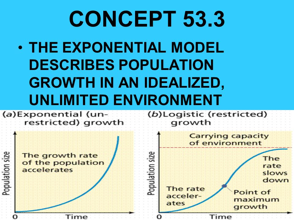 CONCEPT 53.3 THE EXPONENTIAL MODEL DESCRIBES POPULATION GROWTH IN AN IDEALIZED, UNLIMITED ENVIRONMENT