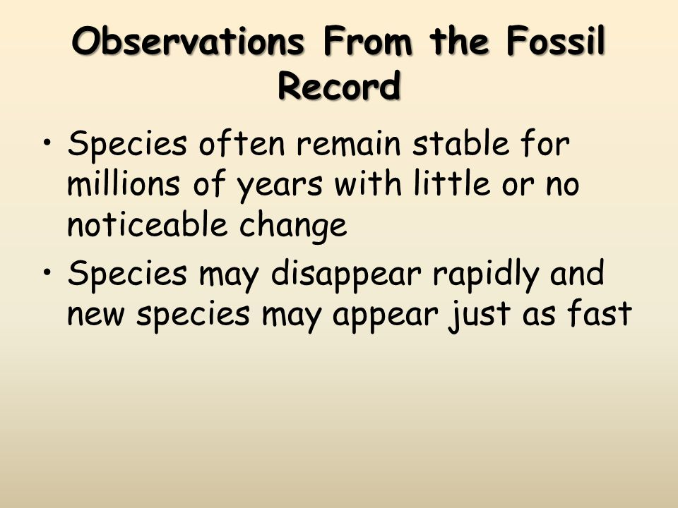 Observations From the Fossil Record Species often remain stable for millions of years with little or no noticeable change Species may disappear rapidly and new species may appear just as fast