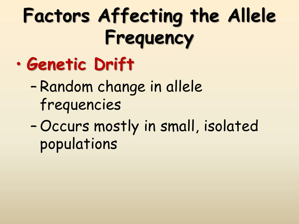 Factors Affecting the Allele Frequency Genetic DriftGenetic Drift –Random change in allele frequencies –Occurs mostly in small, isolated populations