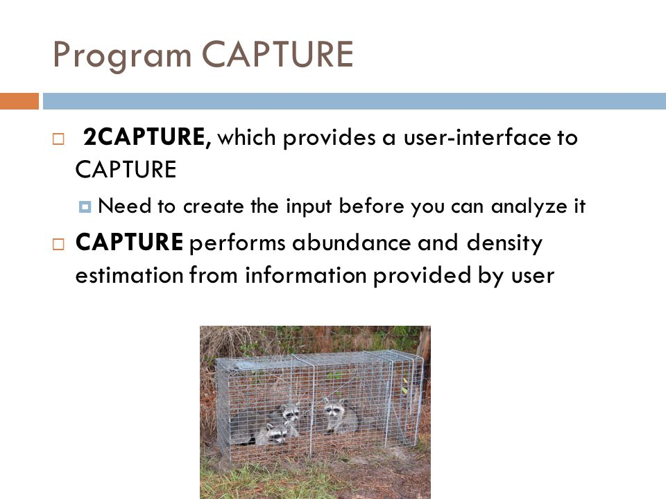 Program CAPTURE  2CAPTURE, which provides a user-interface to CAPTURE  Need to create the input before you can analyze it  CAPTURE performs abundan
