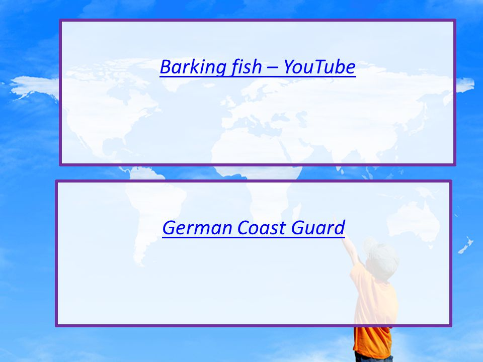 Barking fish – YouTube German Coast Guard