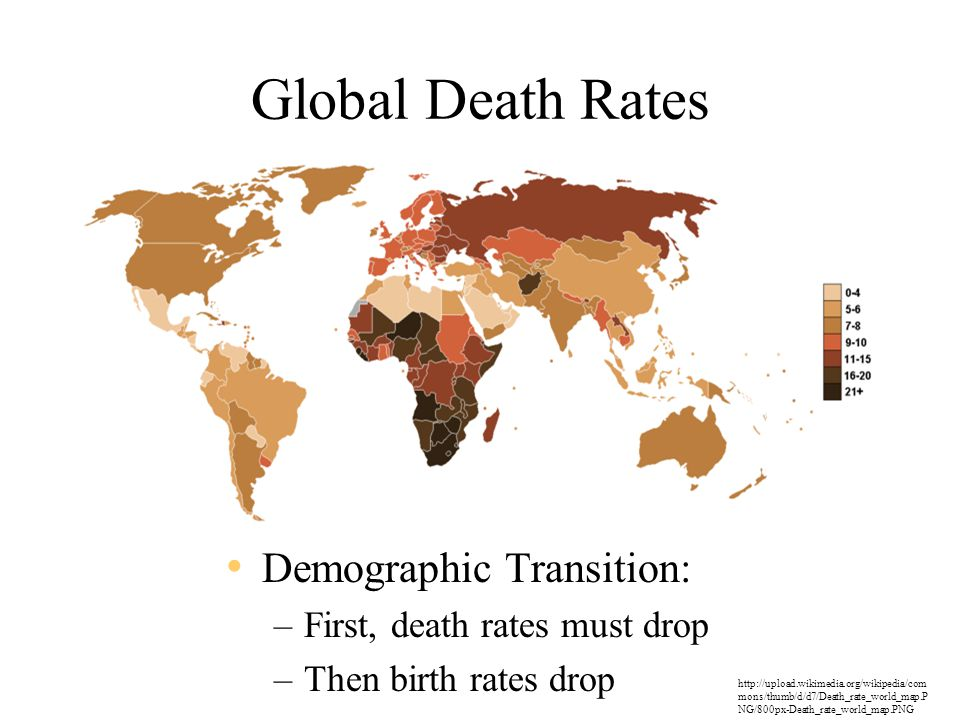Global Death Rates Demographic Transition: –First, death rates must drop –Then birth rates drop http://upload.wikimedia.org/wikipedia/com mons/thumb/d/d7/Death_rate_world_map.P NG/800px-Death_rate_world_map.PNG