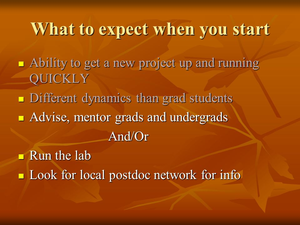 What to expect when you start Ability to get a new project up and running QUICKLY Ability to get a new project up and running QUICKLY Different dynami