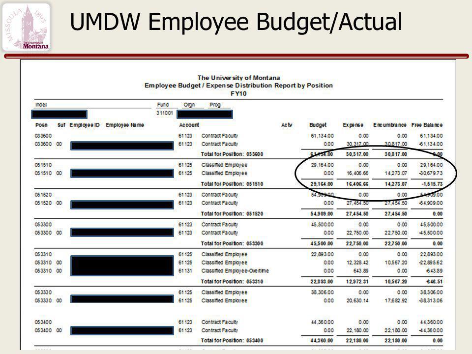 UMDW Employee Budget/Actual