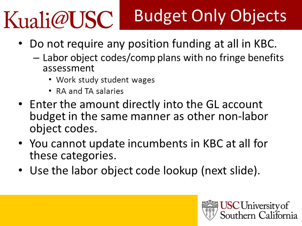 Budget Only Objects Do not require any position funding at all in KBC.